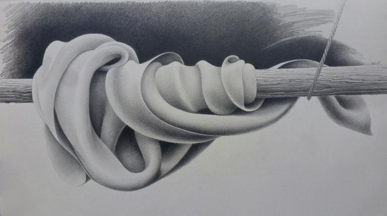 """""""It's a wrap""""  12"""" x 22.5"""" graphite on Fabriano artistico"""